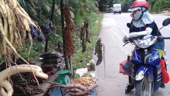 Hàng dược liệu được bày bán trôi nổi tại chợ ven đường. Ảnh: H.L