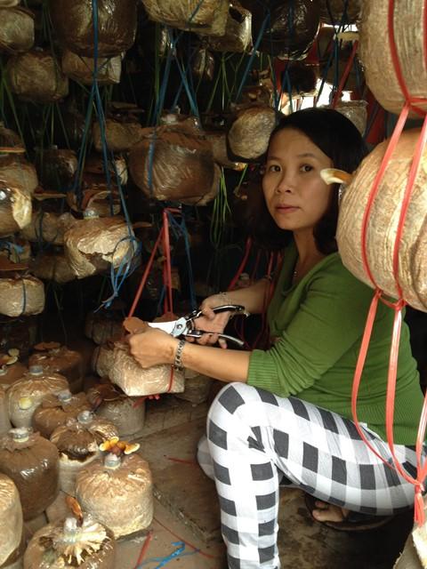 Chị Thu Tuyết với mô hình trồng nấm của mình. Ảnh: M.L
