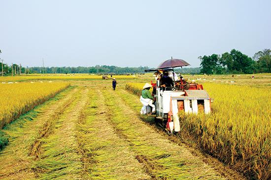 Người dân rất cần vốn để phát triển sản xuất nông nghiệp. Ảnh: PHƯƠNG THẢO