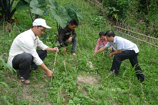"""Nam Trà My đang triển khai hiệu quả mô hình """"3 cán bộ giúp một hộ dân thoát nghèo bền vững""""."""