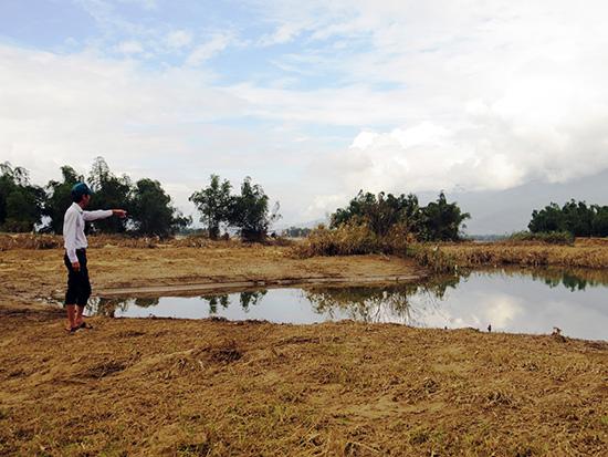 Vùng trồng cây màu tại thôn Mỹ Thuận, xã Đại Nghĩa biến thành con lạch sâu do ảnh hưởng của lũ lụt. Ảnh: H.LIÊN
