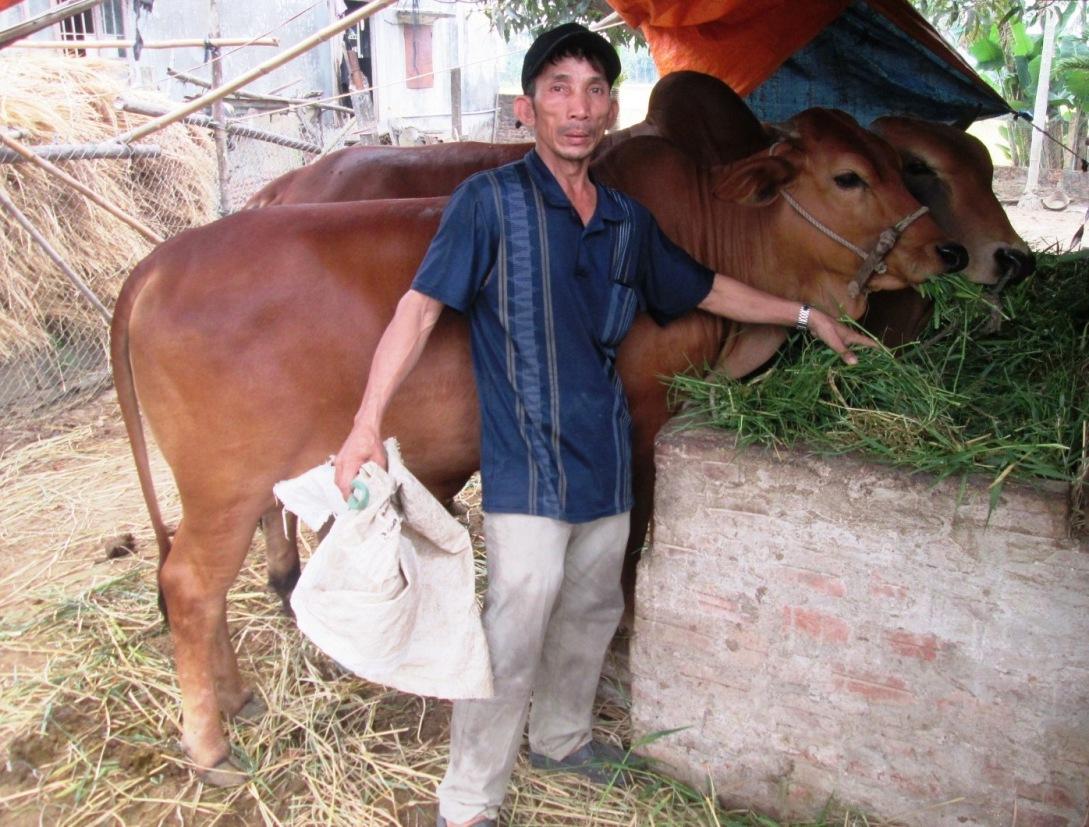 Do giá bán sản phẩm biến động mạnh khiến ngành chăn nuôi của huyện gặp nhiều khó khăn.