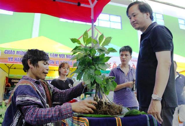 Chợ sâm tại Nam Trà My thu hút người đến tham quan, mua sắm.