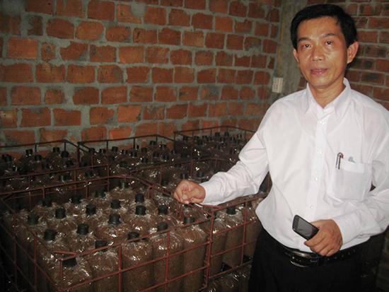 Thăm mô hình nấm bào ngư của ông Xê (thị trấn Núi Thành). Ảnh: VĂN PHIN