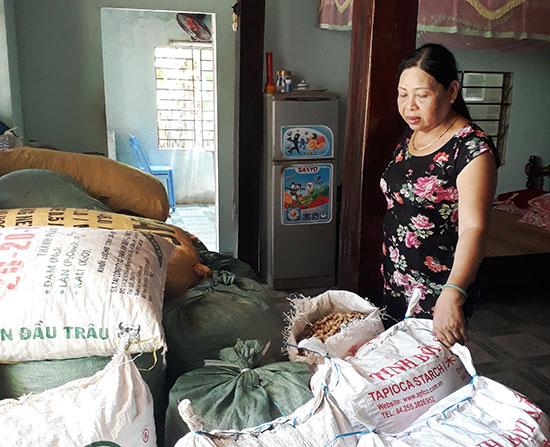 Người trồng đậu phụng xã Đại Hồng bị ép giá sản phẩm vì tin đồn thất thiệt. Ảnh: CÙ THỊ HUỆ