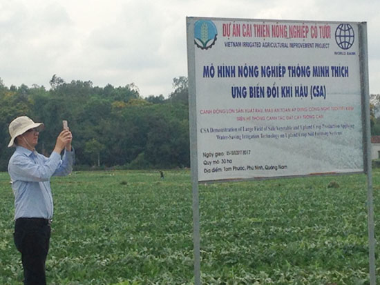 """Mô hình """"cánh đồng thông minh"""" tại Phú Ninh."""