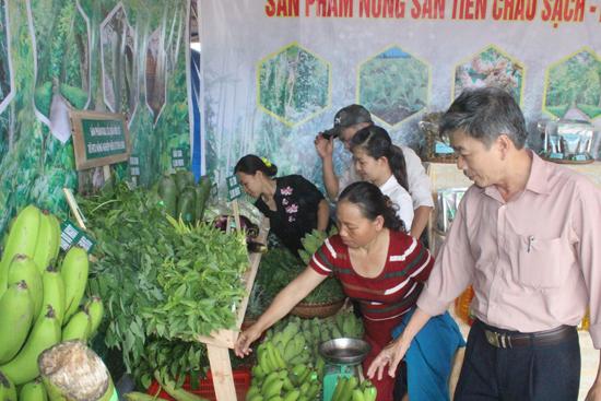 Các sản phẩm rau, quả sạch từ nhà vườn thu hút người chọn mua. Ảnh: D.L