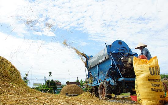 Nhờ nước tưới chủ động và chú trọng đầu tư thâm canh, những năm qua năng suất lúa ở nhiều địa phương liên tục tăng mạnh. Ảnh: PHƯƠNG THẢO