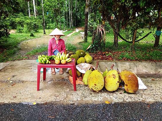 Người dân huyện Tiên Phước bán mít dọc đường.