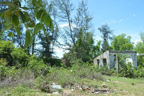 Mảnh đất của ông Nguyễn Song Vũ mua trên đó có 3 ngôi mộ chưa thể giải quyết được. Ảnh: V.L