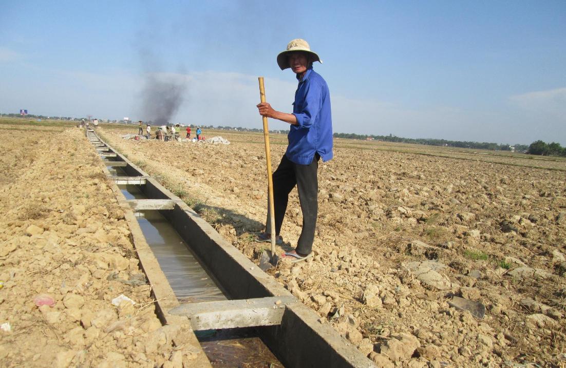Thời gian tới, Quế Sơn cần cấp trên hỗ trợ đầu tư kiên cố hóa hệ thống kênh mương nhằm chủ động phục vụ sản xuất. Ảnh: HÀN PHƯƠNG