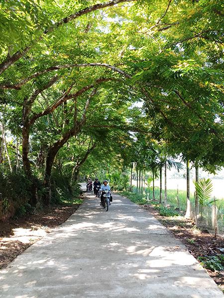 Nhiều tuyến đường nông thôn tại Tiên Phước đã được bê tông hóa khang trang sạch đẹp.  Ảnh: N.HƯNG
