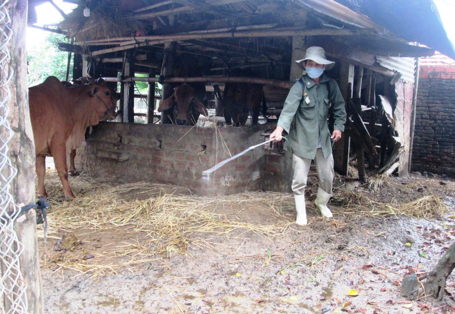 Thường xuyên vệ sinh chuồng trại chăn nuôi để ngăn chặn nguy cơ xuất hiện dịch bệnh.