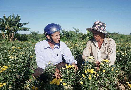 Từ lớp dạy nghề trồng hoa, nông dân xã Điện Hòa áp dụng theo đúng quy trình chăm sóc và đạt kết quả tốt.ảnh: N.Trang