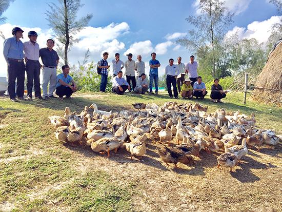 Tham quan mô hình chăn nuôi vịt biển của hộ gia đình ông Đoàn Văn Sanh tổ 11, thôn Bình An.