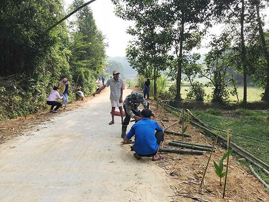 Các hội đoàn thể tại địa phương ra quân trồng cây dọc tuyến đường chính.