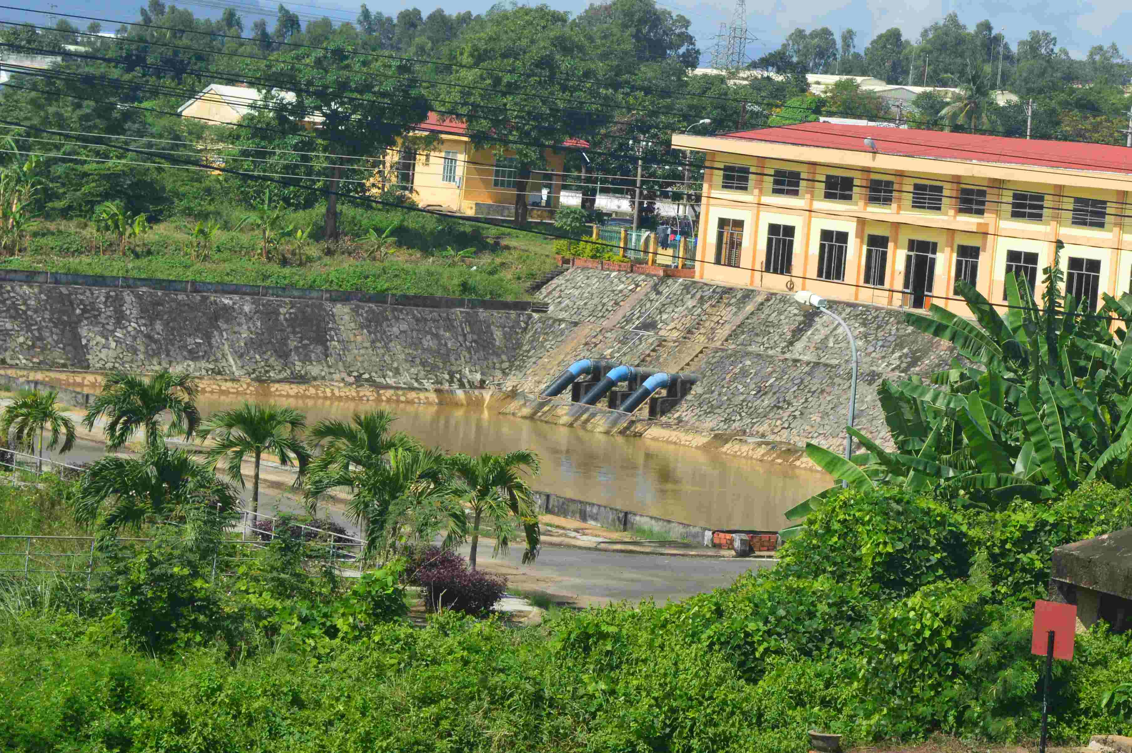 Người dân Đà Nẵng thiếu nước sinh hoạt trên diện rộng vì nước trên sông Cầu Đỏ bị nhiễm mặn. Ảnh: Q.T