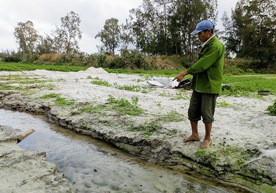 Diện tích trồng rau của người dân xã Bình Triều bị bồi lấp không thể sản xuất được. Ảnh: BIÊN TOÀN