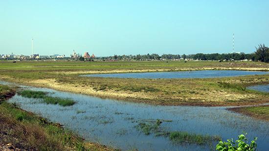 2.000 ha ven biển sẽ dành cho các dự án nông nghiệp công nghệ cao. Hiện một dự án 400 ha tại khu vực này đã được giao cho doanh nghiệp đầu tư.Ảnh: T.D