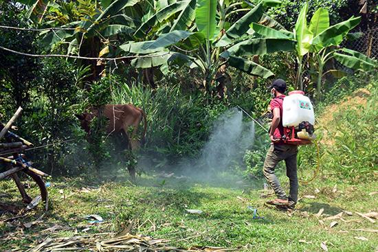 Cán bộ thú y địa phương phun thuốc tiêu độc khử trùng môi trường. Ảnh: BIÊN THỰC