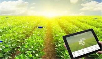 Chuyển đổi số chính là chìa khóa để giúp người nông dân sản xuất nông sản chất lượng, với chi phí thấp nhất nhưng bán ra được giá cao nhất. Ảnh minh họa - Báo Đầu tư.